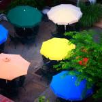 """Umbrellas"" by JenniferEdwards"