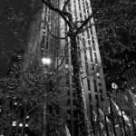 New_York_City gallery