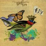 """Fly Altered Art Collage"" by Gidget26"