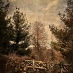 """""""Fence on the Mountain"""" by JimLazosPhotography"""
