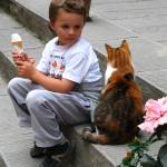 """Child, Cat and the Ice Cream Cone!"" by Vince-McCall-Photography"