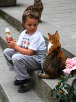 Child, Cat and the Ice Cream Cone!