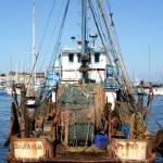 """Fishing Boat Monterey  Bay Marina, CA"" by JewelsOfDenile"