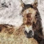 """My Horse"" by RebeccaLangen"