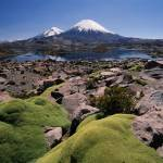 """Volcan Parinacota and moss"" by johnmacdonald"