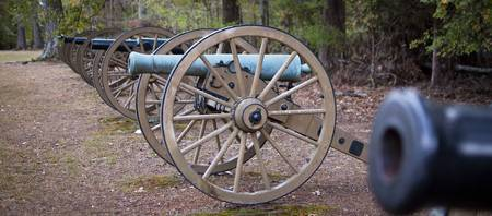 Battle of Shiloh Cannons