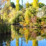 """Kathryn Albertson Park in Fall - Boise, Idaho"" by Amberwatsonwilliams"