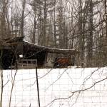 """Rustic shed in a winter scene"" by Swmr152974"