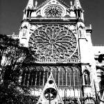 """Notre Dame"" by MLM"