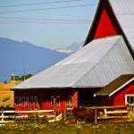 """The Barn"" by raetucker"