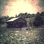 """""""Meadow Of Memories"""" by MissDawn"""