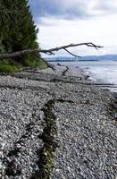 Powell River Beach