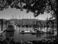 John Wayne Marina - Black And White Photography