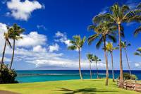 Beautiful Maui - 28980