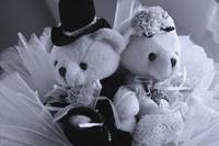 The Wedding Bear