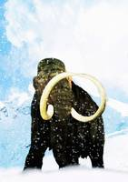 Wooly Mammoth - LongTusks