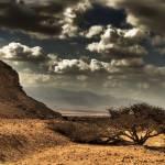 """""""Biblical Desert"""" by AviM"""