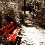"""Lonely Bench"" by fantasticvoyage"