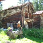 """Rustic Cottage"" by fantasticvoyage"