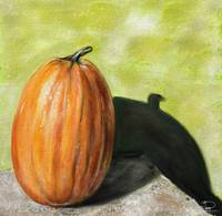 Still Life Single Pumpkin