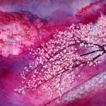 """Cherry Blossoms"" by HaileyWatermedia"