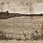 """""""Fields Of Change"""" by MissDawn"""