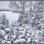 """Forgotten ~ Fishing Boat in Desolate Winter Snow"" by Chantal"