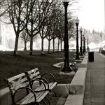 """Waterfront Park"" by raetucker"