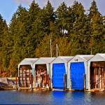 """""""Boat Sheds"""" by raetucker"""