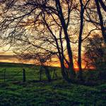 """""""Countryside Sunset"""" by InspiraImage"""