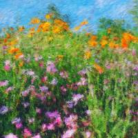 Roadside Wildflowers Art Prints & Posters by James Sybrant