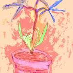 """Flower Pot"" by Polanorth"