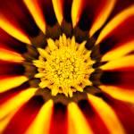 """Solar Flare"" by singularscenes"