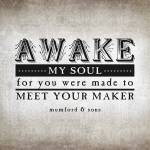 """Awake My Soul (Gray)"" by madebyelle"