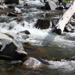 """""""Mountain Stream"""" by NikkiLeck"""