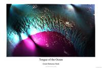 Tongue of Ocean
