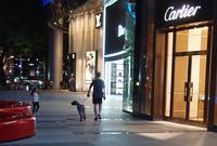 Walk the dog at Ion Orchard