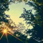 """Last days of summer"" by dangerduck20"
