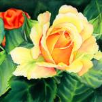 """Yellow Roses"" by HaileyWatermedia"