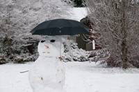 Seattle Snowman Anticipates Rain
