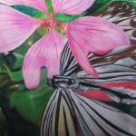 """Butterfly on Pink Flower"" by LauraDunce"