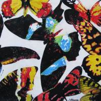"""Butterfly Collage"" by Laura Dunce"