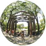 """NYC ZOO Archway Trees Summer fisheye view"" by apanoramicview"