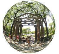 NYC ZOO Archway Trees Summer fisheye view