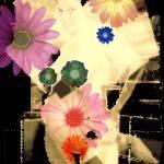 """floweroticism"" by jsgrafix"