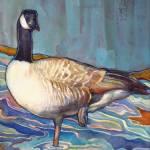 """Dusky Canada Goose"" by SusanFaye"