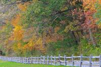 FENCE ALONG AN AUTUMN MEADOW