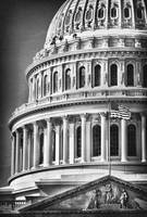 US Capitol Dome in Black and White