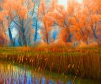 Orange autumn forest beside the river