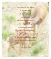 love is... Deer